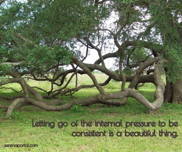 Letting go of consistency FB MEME
