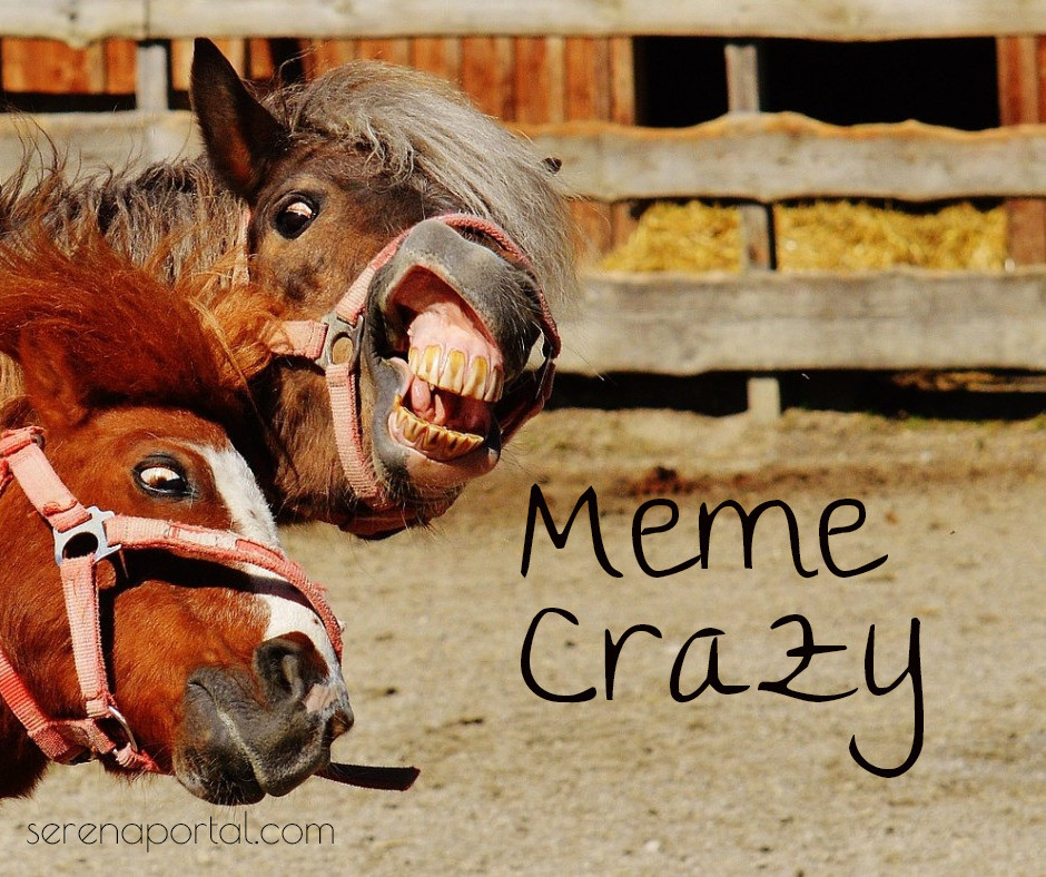 Meme crazy Meme